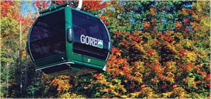 Fall Foliage Tour Gondola Ride