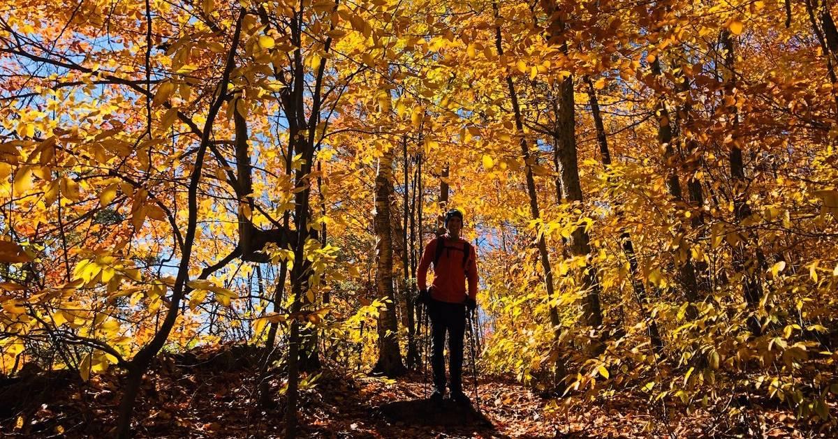 hiker in woods in fall