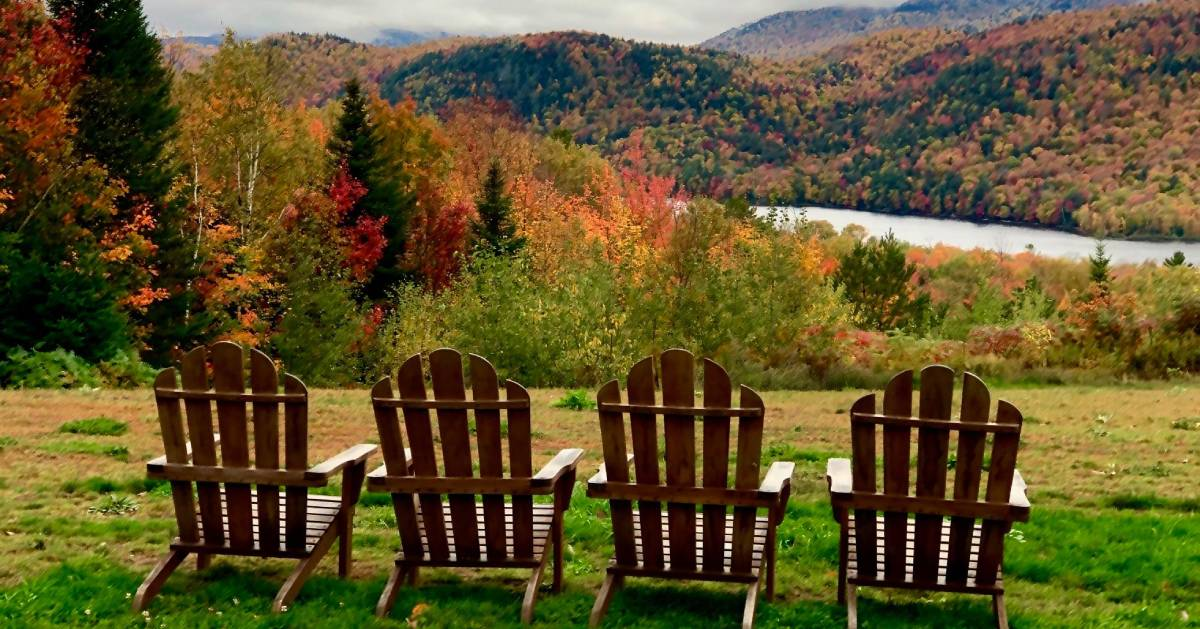 view of fall foliage with Adirondack chairs