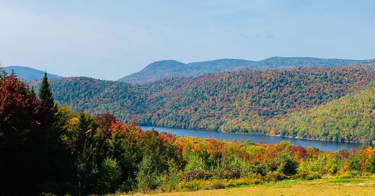 fall foliage on mountains near lake