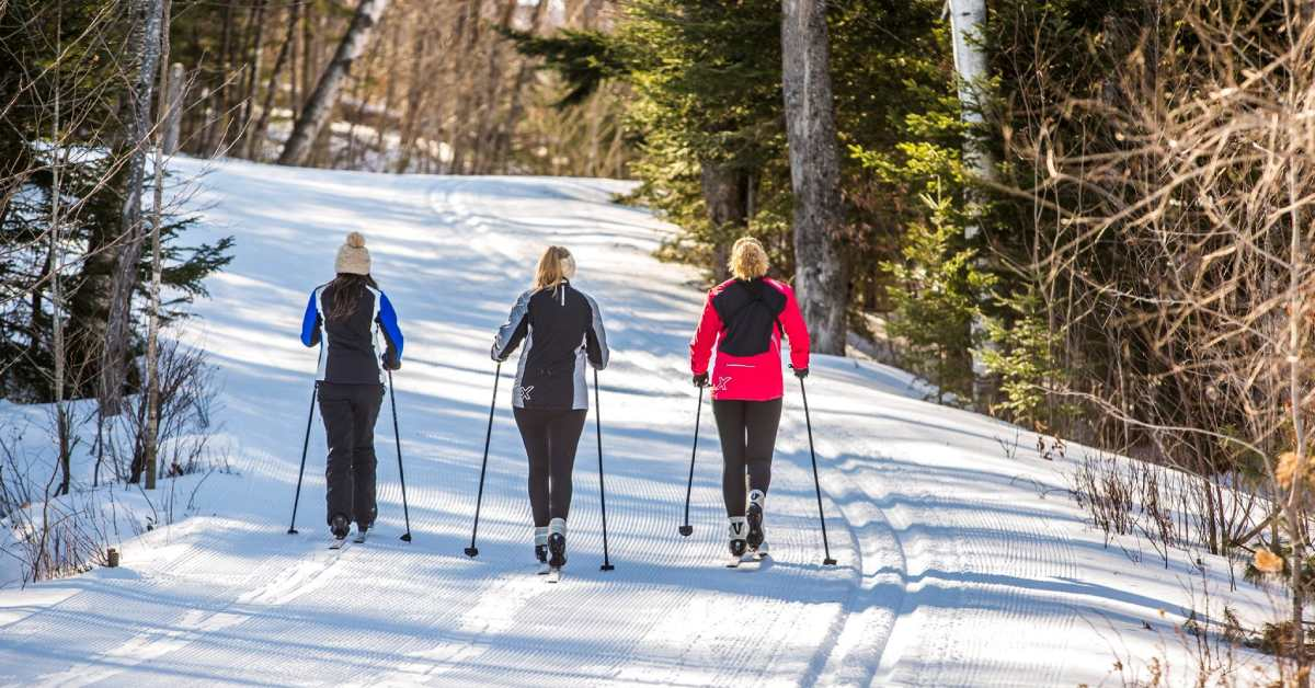 three people cross country skiing down a trail