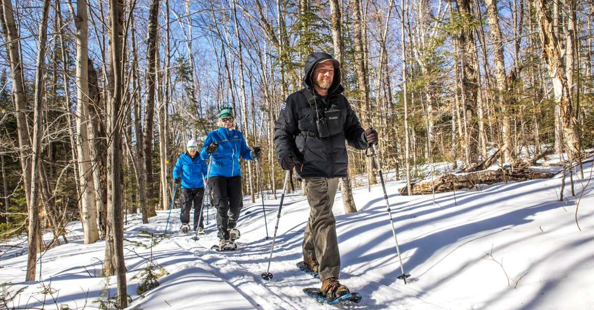 small group snowshoeing in woods