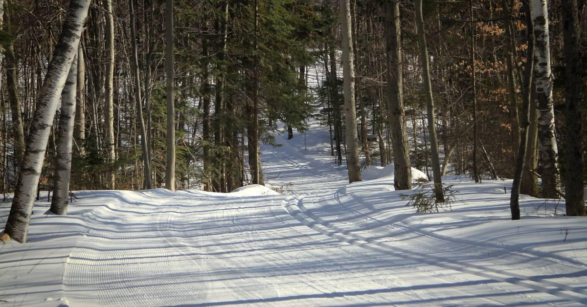 a groomed ski trail
