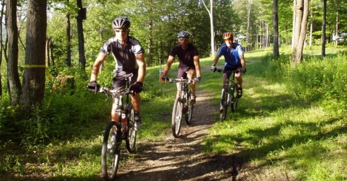 three people biking in the woods