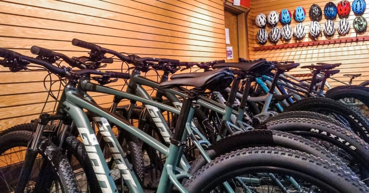 row of bikes in a shop