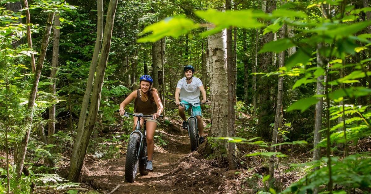 couple mountain bikes